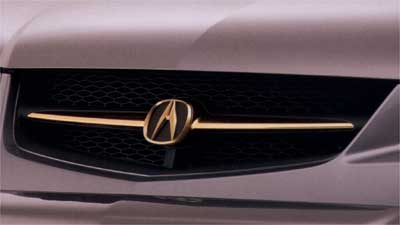 2004 Acura MDX Gold Inner Grille 08F21-S3V-200A